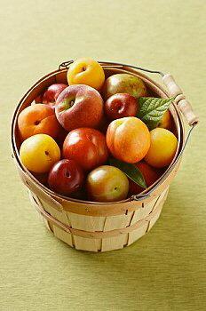sepetli-yaz-meyveleri