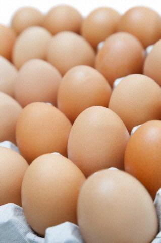 Yumurta, Et Grubu Besinler İçerisinde Yer Alır